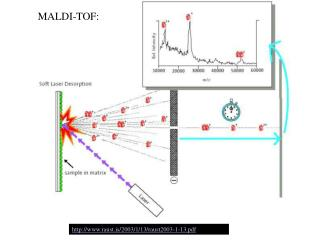 MALDI-TOF: