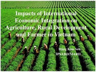 Đặng  Kim  Sơn IPSARD/MARD