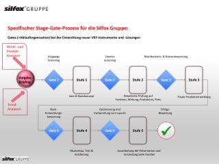 Spezifischer Stage-Gate-Prozess für die Silfox Gruppe: