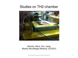Studies on TH2 chamber