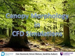 Canopy Morphology in CFD Simulations