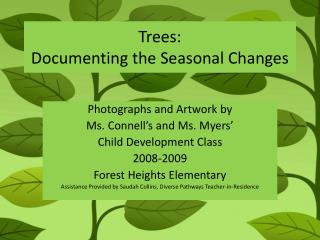 Trees:   Documenting the Seasonal Changes