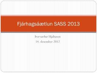 Fjárhagsáætlun SASS 2013