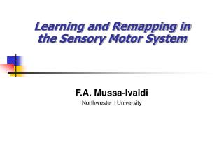 Learning and Remapping in the Sensory Motor System