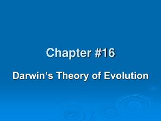 Evolution-change over time