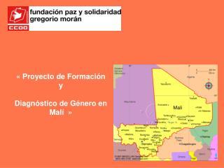 « Proyecto  de  Formación  y  Diagnóstico  de  Género  en  Malí »