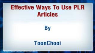 ppt 42078 Effective Ways To Use PLR Articles