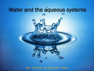 Water and the aqueous systems