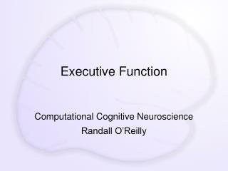 Executive Function