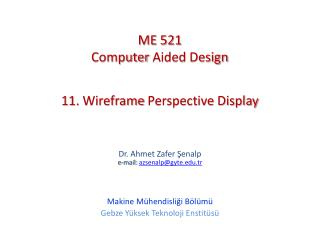11.  Wireframe Perspective Display