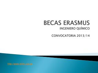 BECAS ERASMUS INGENIERO QUÍMICO CONVOCATORIA  2013/14