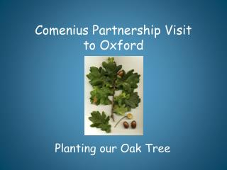 Comenius Partnership Visit  to Oxford
