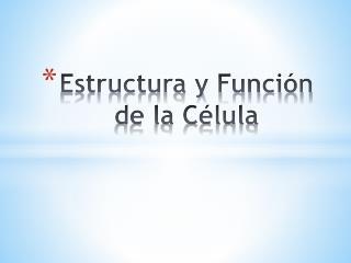 Estructura y Función de la Célula