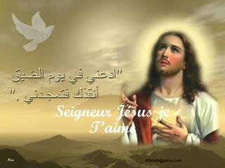 Seigneur Jésus je T'aime
