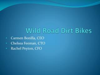 Wild Road Dirt Bikes