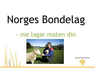 Norges Bondelag - me lagar maten din
