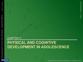 Physical and Cognitive Development in Adolescence
