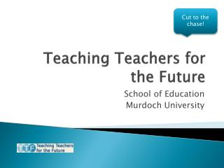 Teaching Teachers for the Future