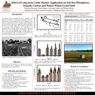 Effect  of Long-term Cattle Manure Application on Soil Test Phosphorus,
