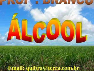 PROF : BRANCO
