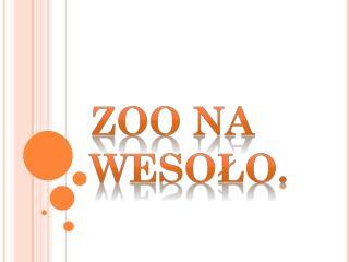 Zoo na wesoło.