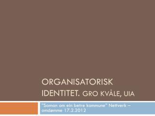 Organisatorisk identitet.  Gro Kvåle,  Uia