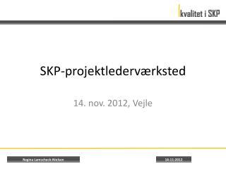 SKP-projektlederværksted