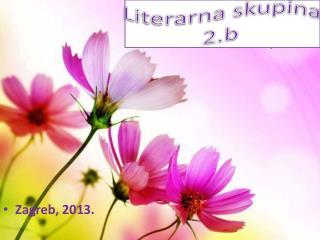 Literarna skupina 2.b