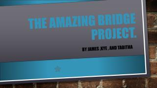 The amazing bridge project.