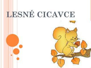 LESNÉ CICAVCE
