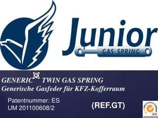 GENERIC     TWIN GAS SPRING Generische Gasfeder für  KFZ- Kofferraum