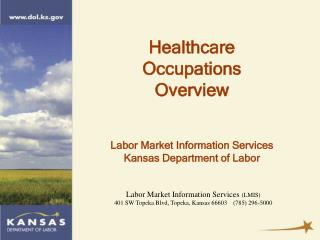 Labor Market Information Services  (LMIS)