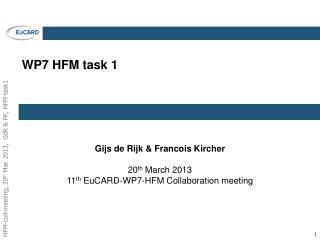 WP7 HFM task 1