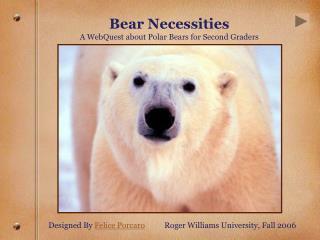 Bear Necessities  A WebQuest about Polar Bears for Second Graders