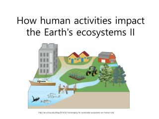 How human activities impact the Earth's ecosystems  II