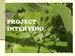 PROJECT  INTERVINO                                   Socrates