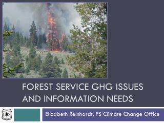 Forest Service GHG ISSUES and information needs