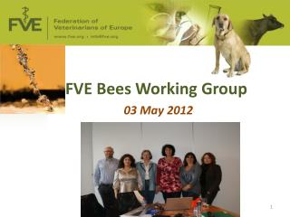 FVE Bees Working Group