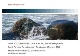 Anders Birkelund Nielsen, specialist advokat abn@bechbruun