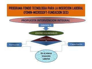 PROGRAMA FONDO TECNOLOGIA PARA LA INSERCION LABORAL (FOMIN-MICROSOFT-FUNDACION SES)