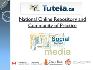 National  Online Repository  and Community of Practice