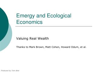 Emergy and Ecological Economics