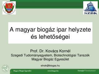 A magyar biogáz ipar helyzete és lehetőségei