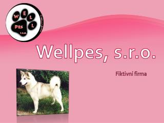 Wellpes , s.r.o.