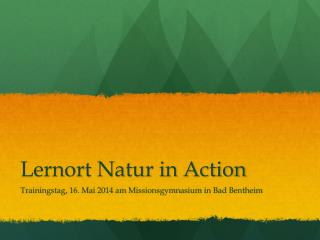 Lernort Natur in Action