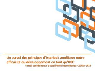 Un survol des principes d'Istanbul: améliorer notre efficacité du développement en tant qu'OSC