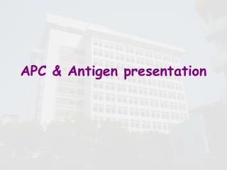 APC & Antigen presentation