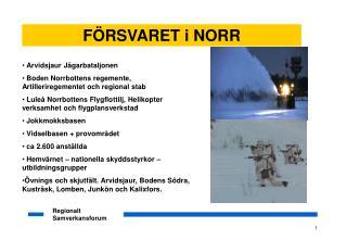 Arvidsjaur Jägarbataljonen  Boden Norrbottens regemente,  Artilleriregementet och regional stab