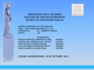 CATEDRA: SEMINARIO DE CONTABILIDAD  TEMA:   NIIF PYMES SECCIONES 20, 21,22�.