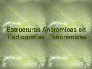 Estructuras Anat micas en  Radiograf as  Panor micas